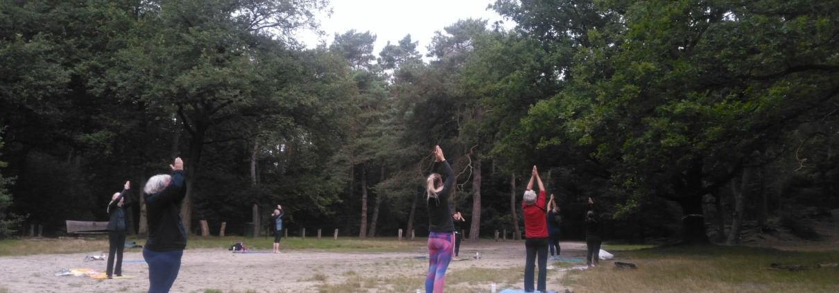 Mindful Bootcamp in het Dwingelderveld